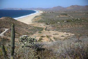 Beach_vista