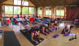 The Yoga Season Begins at Yandara Yoga